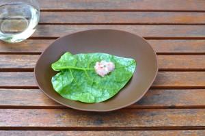 mugaritz scarlett shrimp sake lees