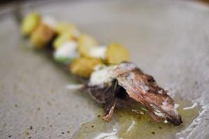aska juniper herring