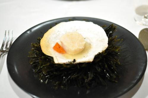 aubergine carmel diver scallop