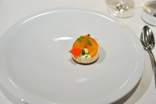 aubergine carmel bavarois