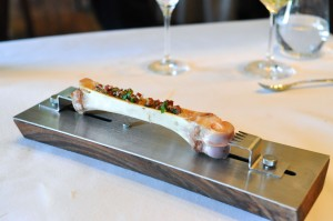 blue hill bone marrow