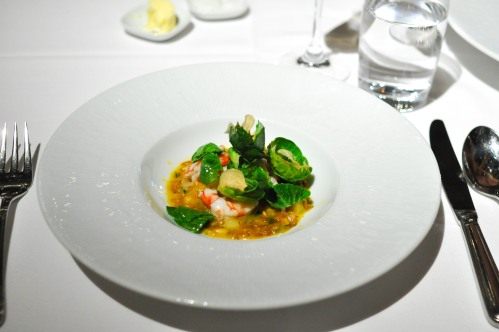 gramercy tavern ruby red shrimp